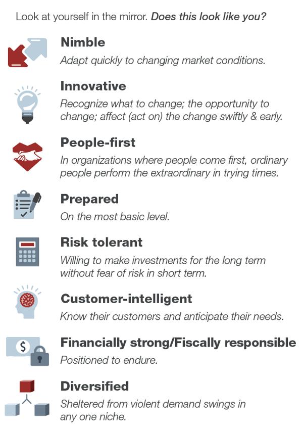 Successful Strategies of Disruption Survivors